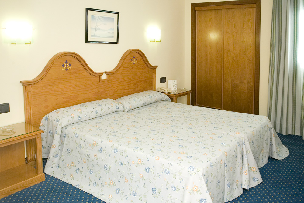 hoteles en Talavera Hotel Ebora