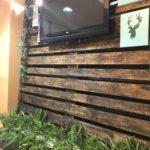 Cafetería Green´s Back en Talavera de la Reina en Hotel Ebora